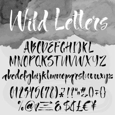 Brush lettering alphabetical set