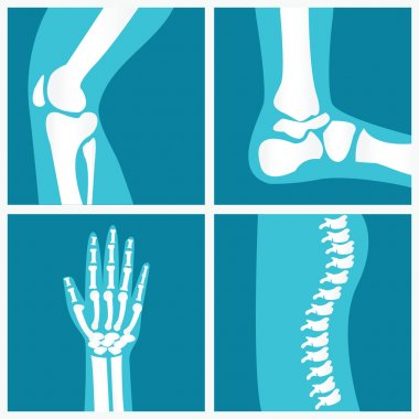 Set of human joints.