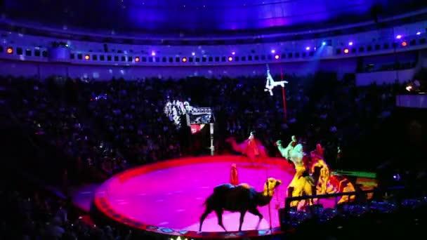 Výkon ve velké krásné cirkus