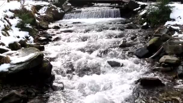 Mountain River Waterfall in Spring Forest.