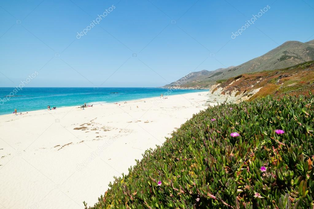 White sand beach paradise along the pacific coast highway route one white sand beach paradise along the pacific coast highway route one united states california photo by samspicerphotography publicscrutiny Image collections