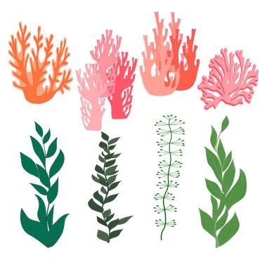 leaves and seaweed