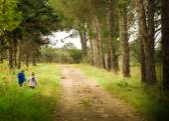 Fotografie Zwei kleine Jungen, die Hand in Hand zu Fuß im Wald