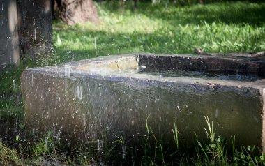 Water splashing on old concrete water trough