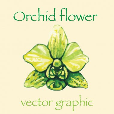 Isolated orchid flower. Watercolor vector yellow orchid flower.