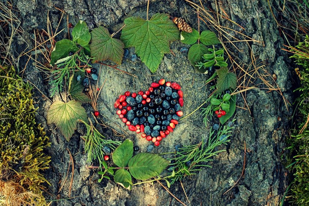 A Variety Of Wild Berries In The Shape Of Heart As A Symbol Of