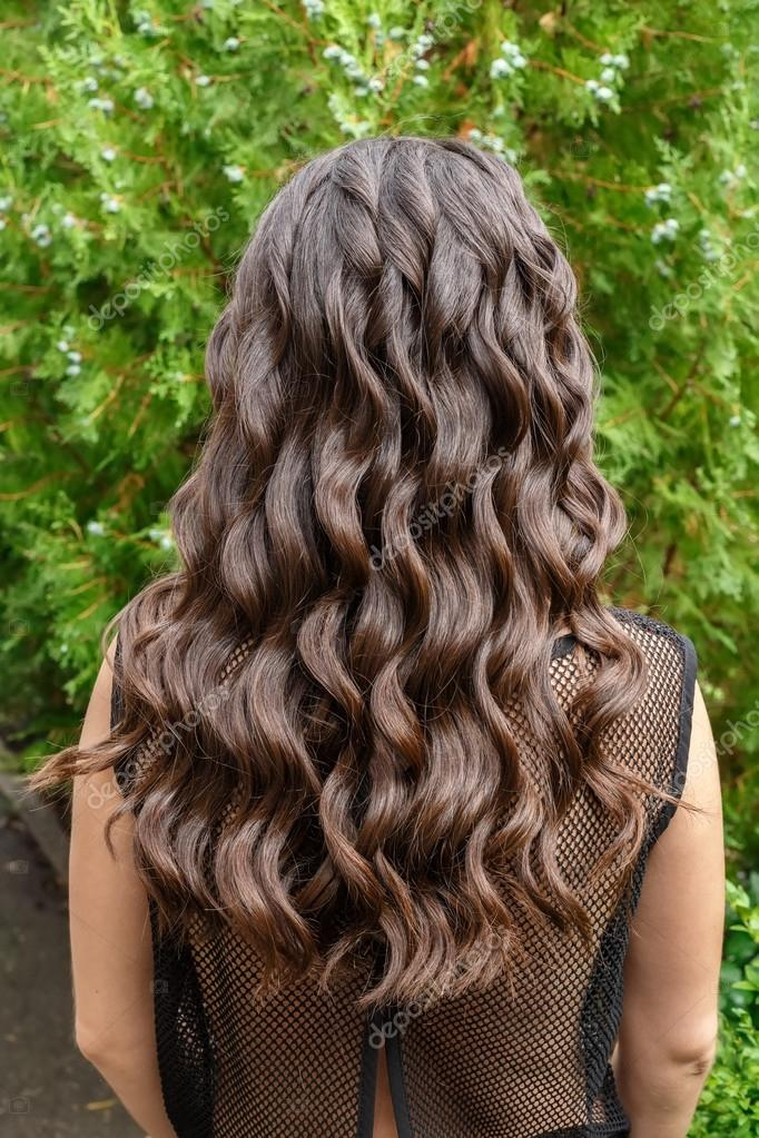 Long Glossy Curly Hair Back View Stock Photo C Alterphoto 120217124