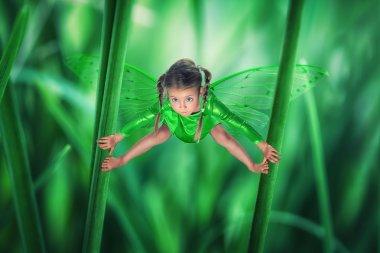 Little, cute, green fairy