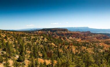 Bryce Canyon Panorama