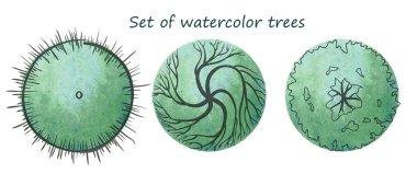 Watercolor trees set, vector