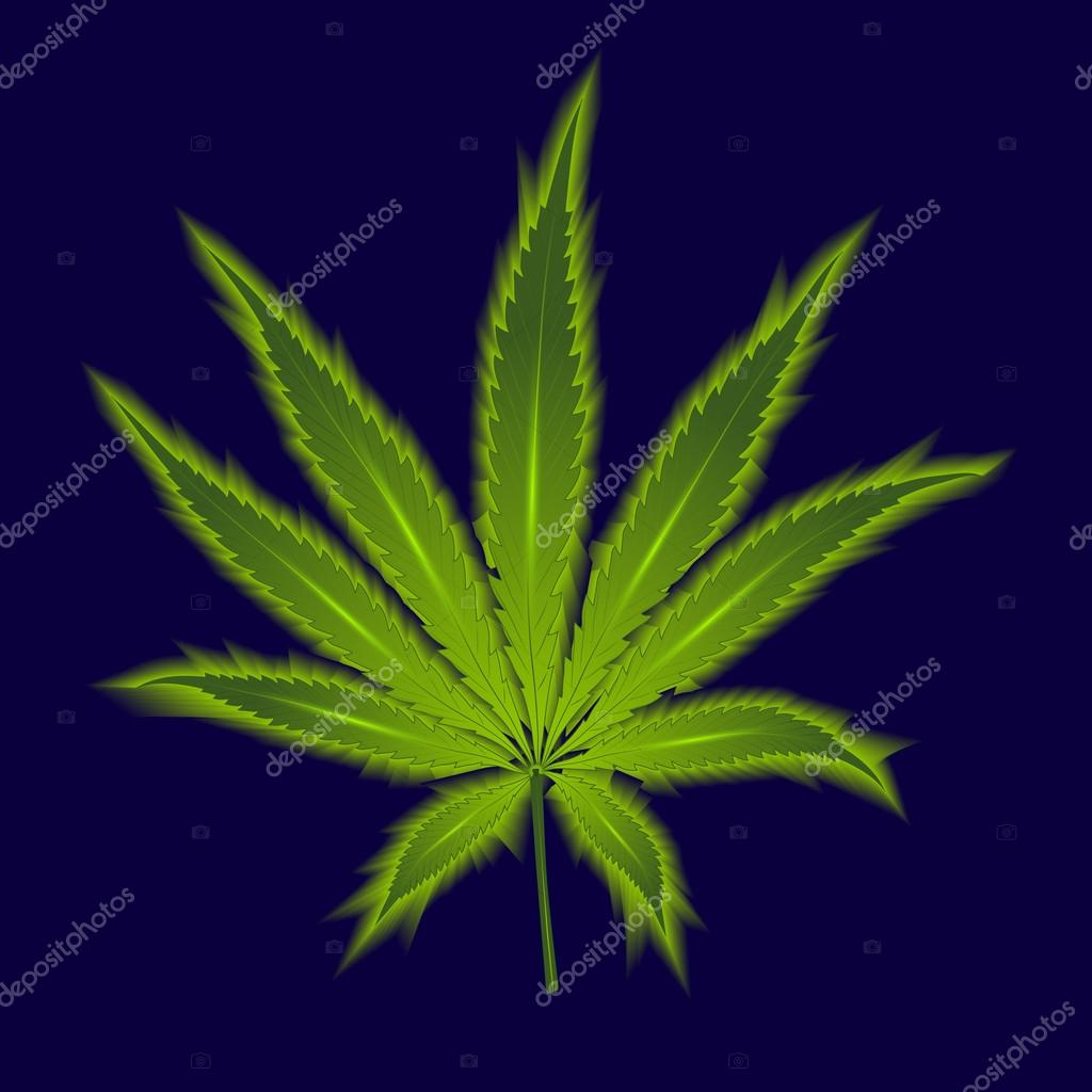Cannabis leaf on a dark blue background