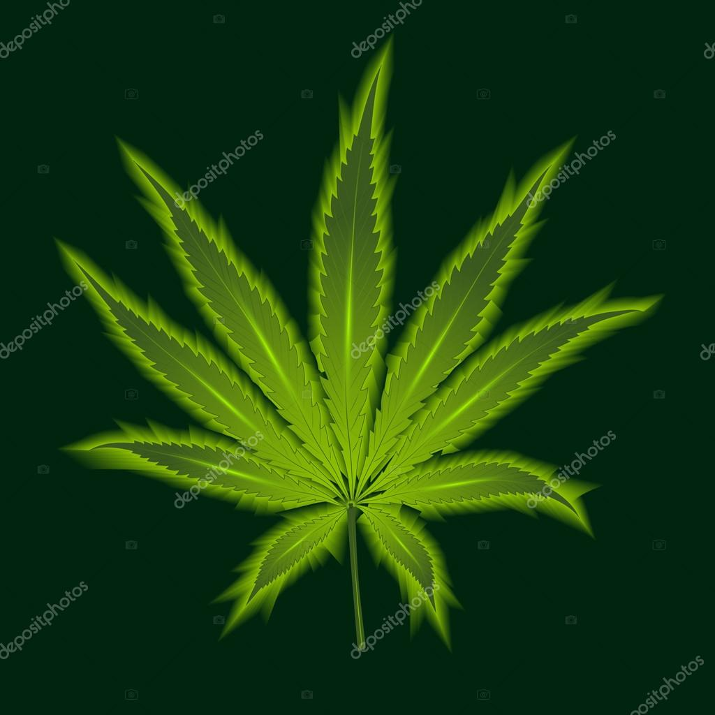 Cannabis leaf on a green background