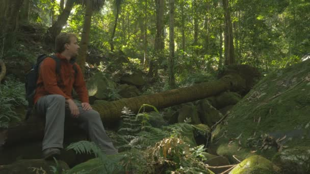 Man With Rucksack Backpack sitting looking at rainforest woods, Green Tourism