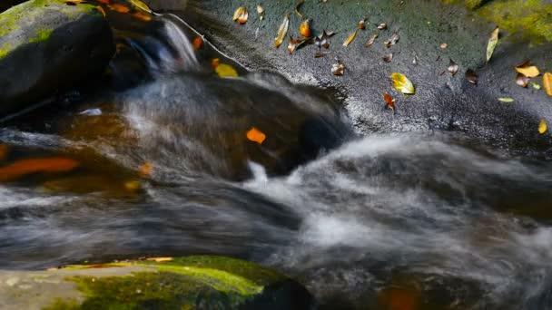 fresh water creek flowing over rocks