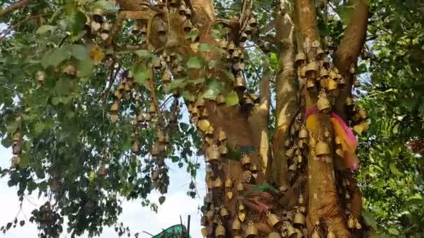 Buddhista harangok a fán Phuket nagy Buddha Thaiföld