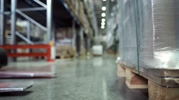 Üzleti logisztikai és szállítási létesítmény üzemi targonca kétkezi munkás