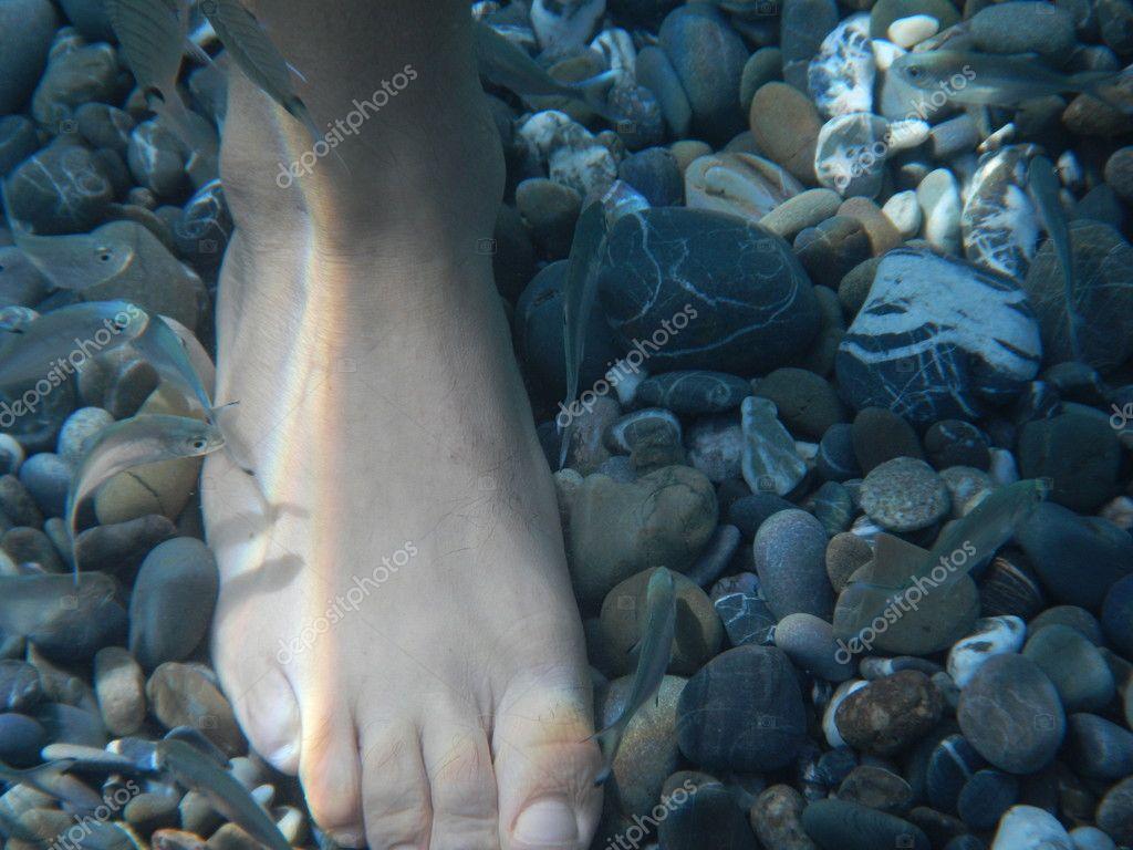 pesciolini che danno piccoli morsi ai piedi