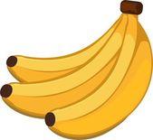 Banán je botanicky jedlé plody, bobule