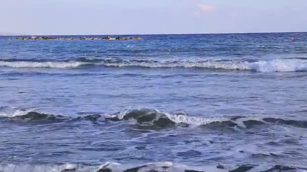 Příboj moře a pláže a hejno racků