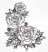 Vintage virágos kézzel rajzolt Rózsa virág szára