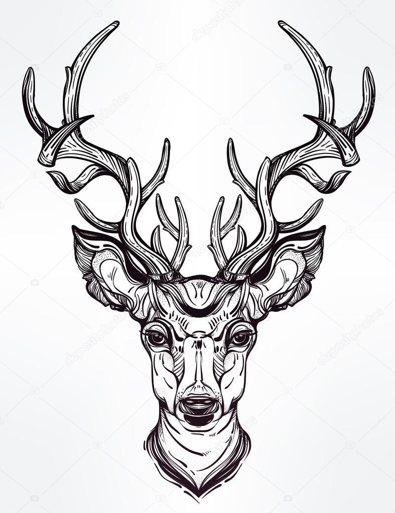 Flower Head Line Drawing : Tête de cerf dans le style ligne art — image