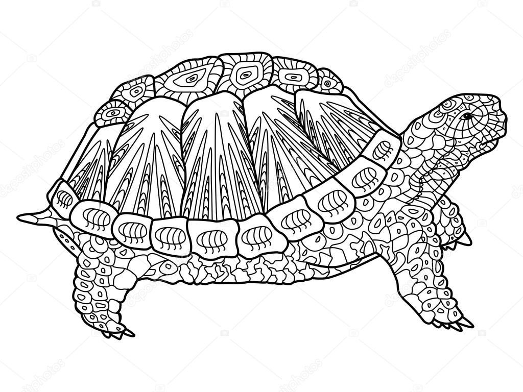 Turtle coloring book for adults vector — Stock Vector ...