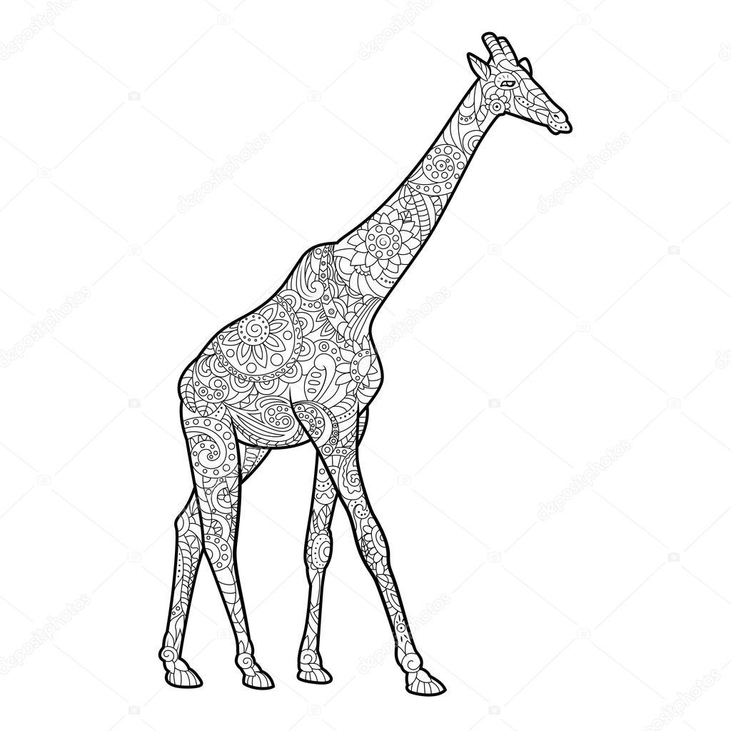Coloriage Adulte Girafe.Girafe Coloriages Pour Vecteur Adultes Image Vectorielle