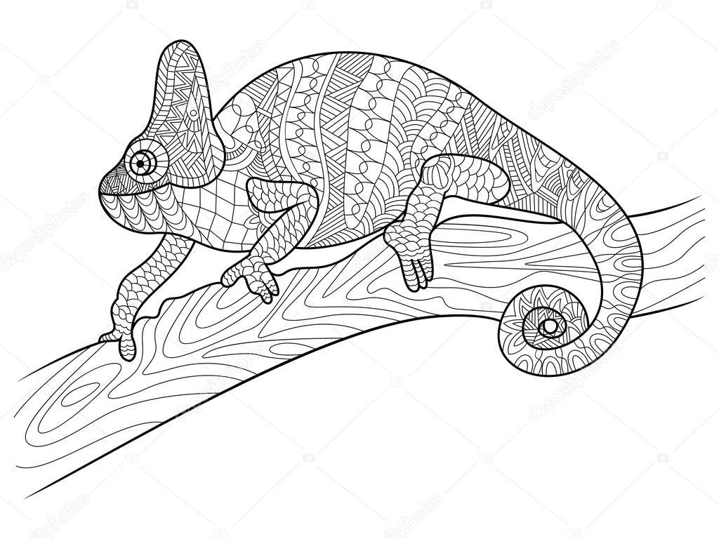 bukalemun hayvan boyama kitabı yetişkin vektör için