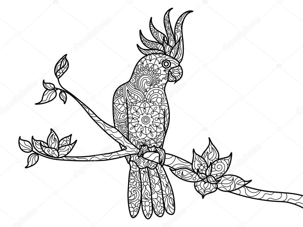 kaketoe papegaai kleurboek voor volwassenen vector