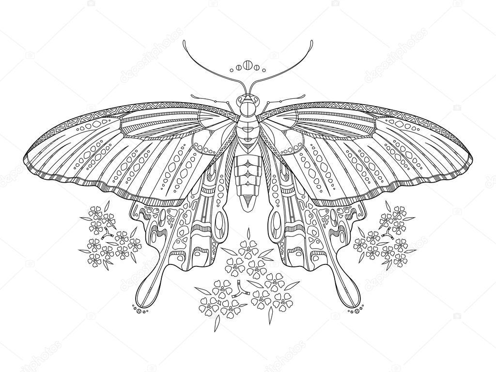 蝶ベクトルの大人のための塗り絵 ストックベクター Alexanderpokusay