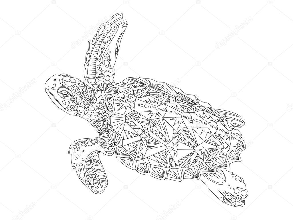 Kleurplaten Voor Volwassenen Schildpad.Schildpad Kleurboek Voor Volwassenen Vector Stockvector