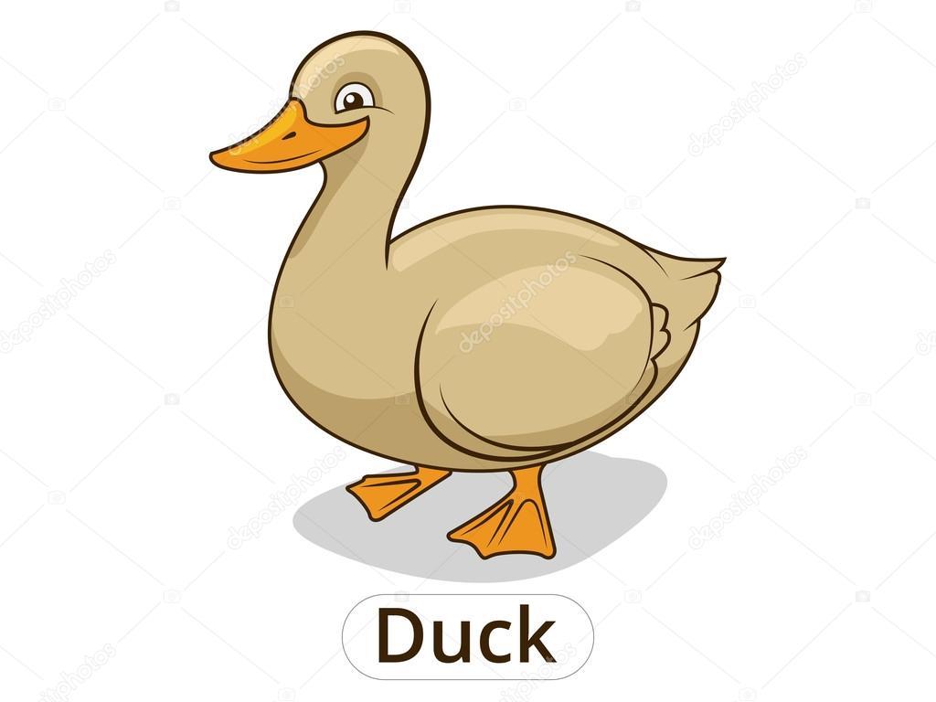 Ilustración de animales de dibujos animados de pato para ...