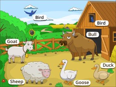 Farm animals with names cartoon educational