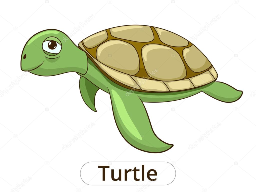 Turtle underwater animal cartoon illustration