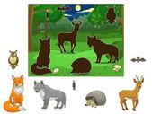 Odpovídají zvířata na stíny