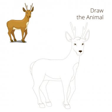 Draw the forest animal roe deer cartoon