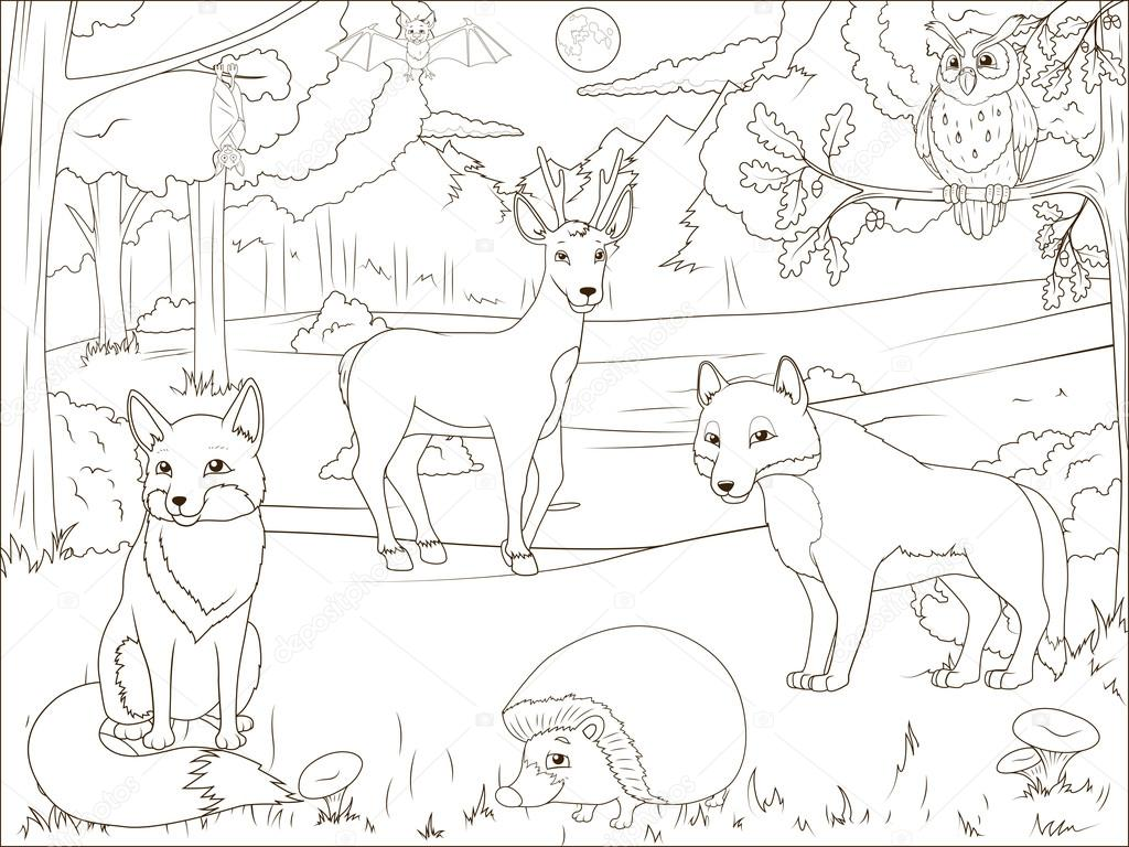 Cartoon Animals To Color Coloring Book Forest With Cartoon