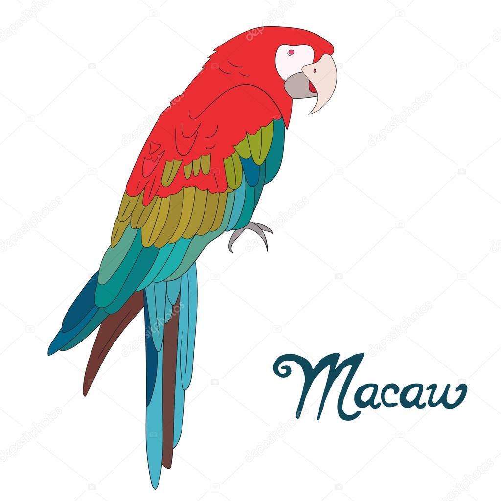 Imágenes Guacamaya Vectorizada Ilustración De Vector De Aves