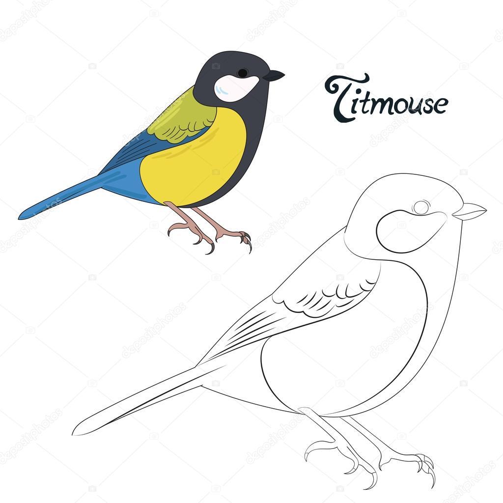 Juego educativo para colorear vector de aves libro — Archivo ...