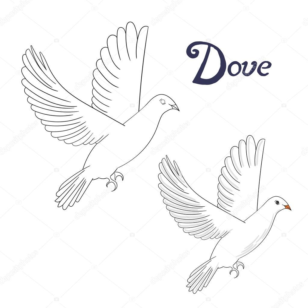 Libro para colorear juego educativo Paloma pájaro — Archivo Imágenes ...