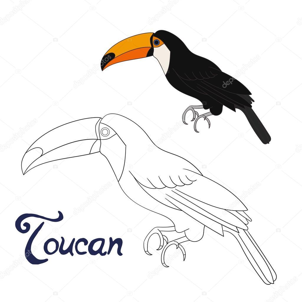 Juego educativo para colorear vector de pájaro tucán libro — Archivo ...
