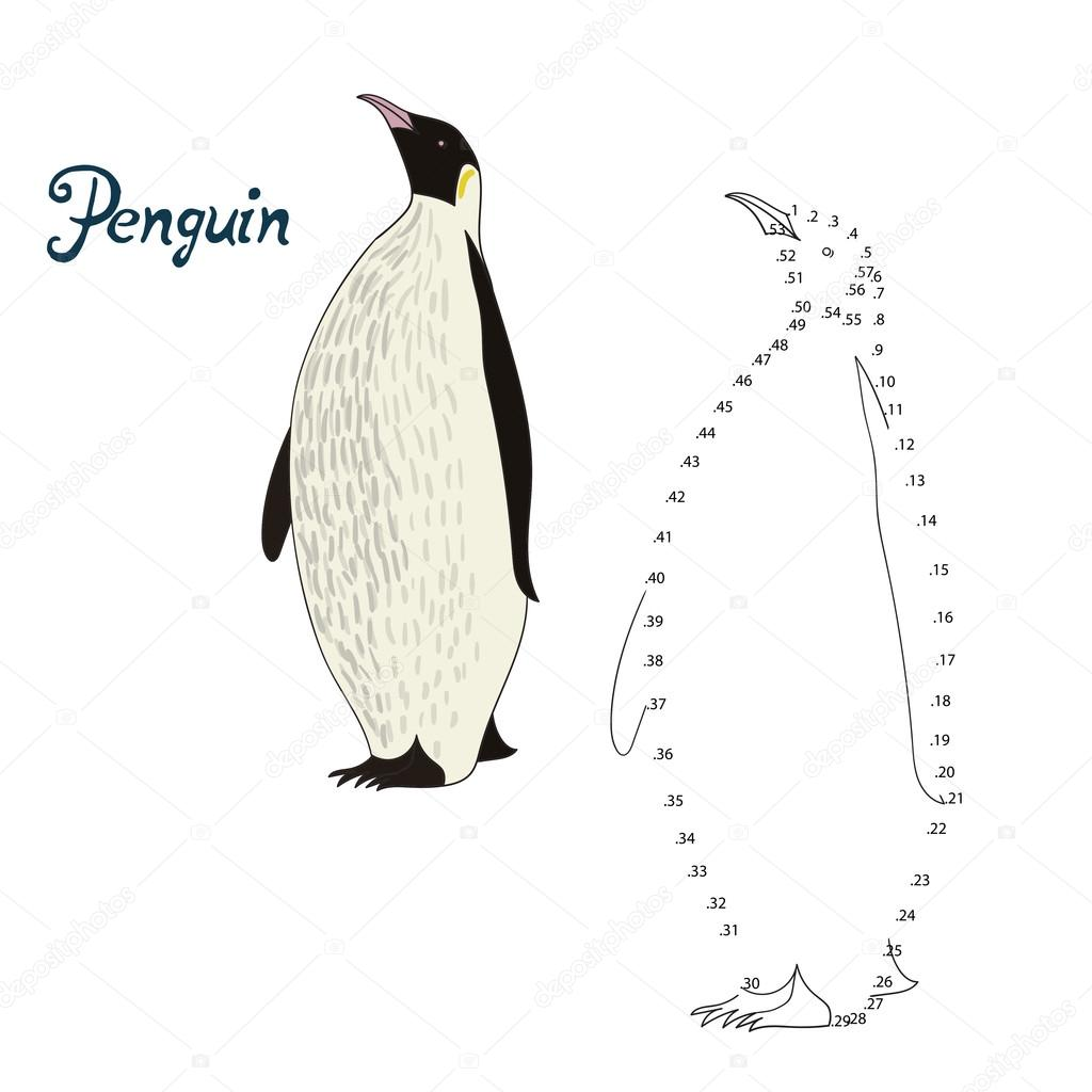educational game connect dots draw penguin bird u2014 stock vector