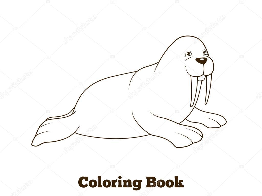 Dibujos animados de morsas para colorear ilustración vectorial del ...