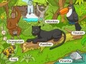 Dzsungel erdő állatok cartoon vektor