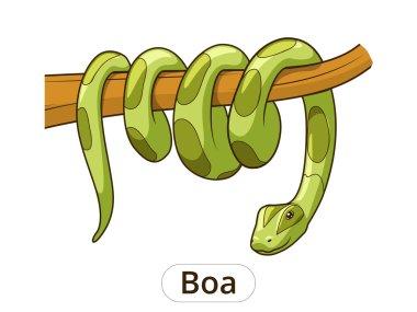 Boa snake cartoon vector illustration