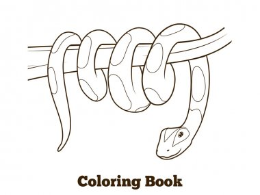 Boa cartoon coloring book vector illustration