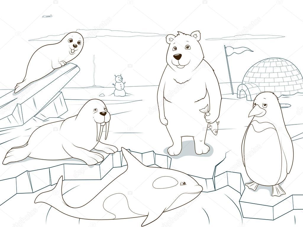 Animales árticos juego educativo libro de colorear — Archivo ...