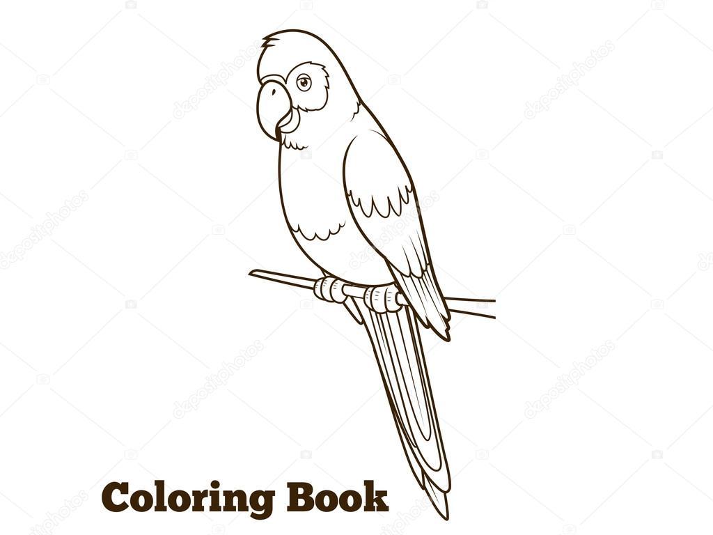 Dibujos animados de loro para colorear ilustración vectorial del ...