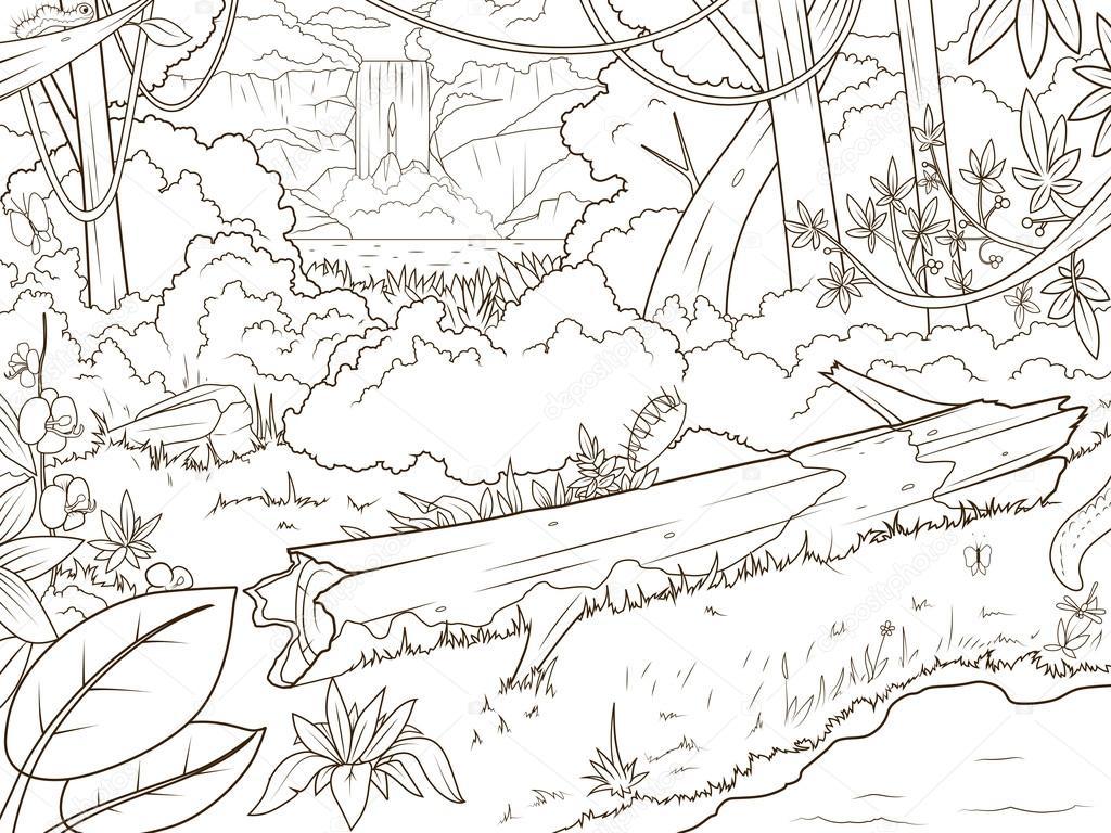 Cascada de bosque de selva para colorear dibujos de libro — Archivo ...