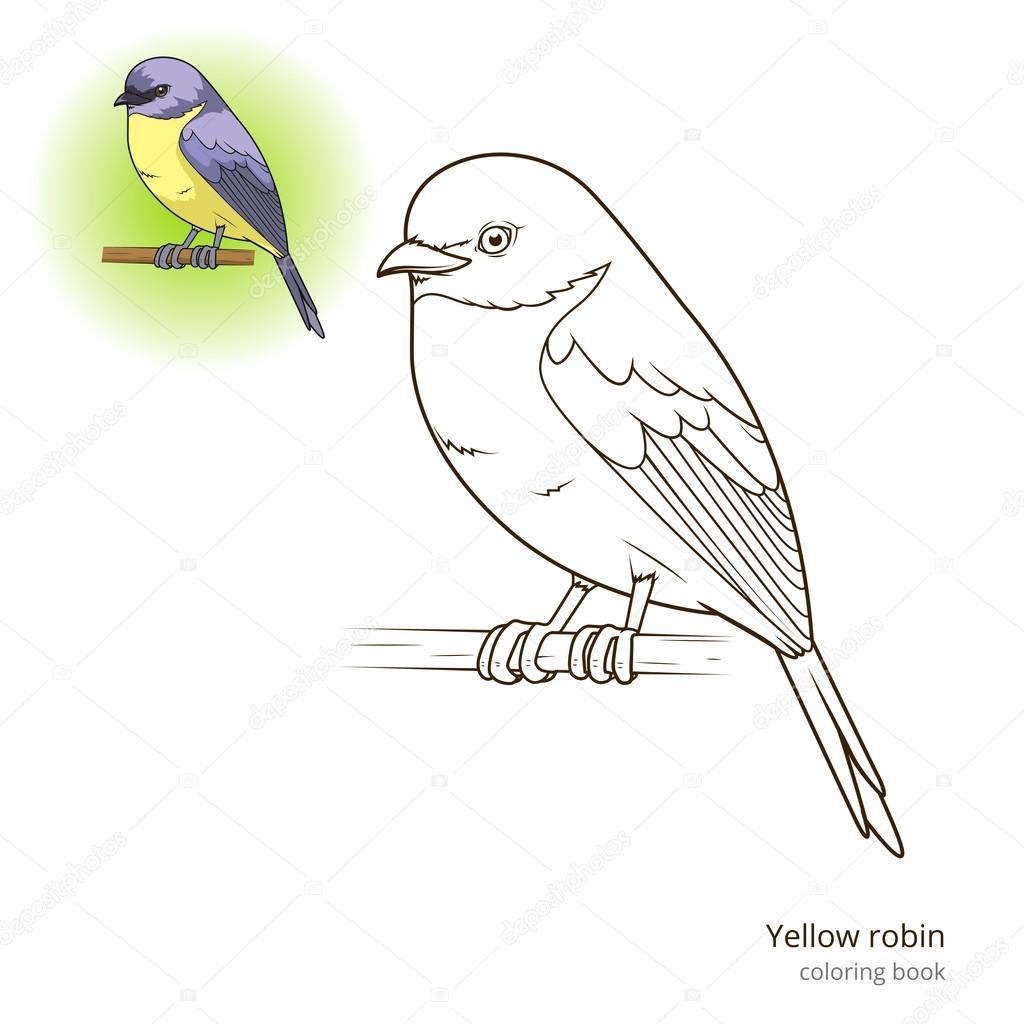 Pájaro amarillo robin vector libro de colorear — Vector de stock ...